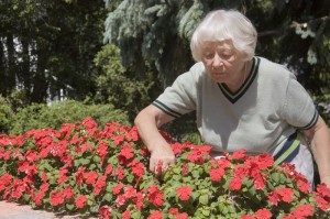 Woman pruning her flowers at an independent living community residence