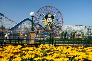 The ferris wheel at Disney's California Adventure in Anaheim California