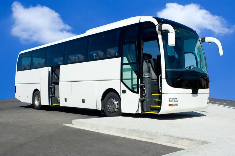 Is A Senior Citizen Bus Tour For You Motif